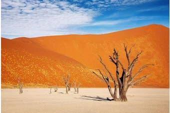 (46cm H x 90cm W) - Reptile Habitat, Terrarium Background, Orange Desert Sky with Tree - (Various Sizes)
