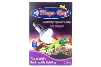 Mega-Ray Mercury Vapour Bulb - 70 Watts - Smallest UV Vapour Bulb On The Planet