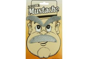 Halloween Grey Moustache and Eyebrow Set