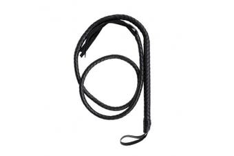 BinaryABC Catwoman Whip,Leather Whip ,Handle Whip for Halloween Costume Accessories 1.6m(Black)