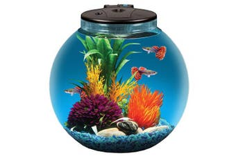 Koller Products AquaView 11.4l Fish Tank with Power Filter and LED Lighting