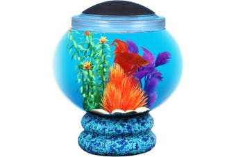 Koller Products BettaTank 6.1l Fish Bowl with LED Lighting