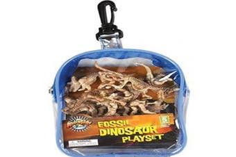 Dinosaur Fossil Set