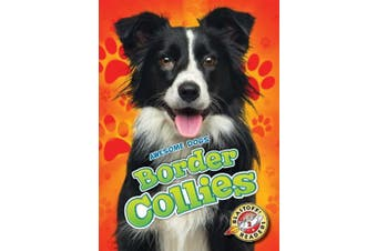 Border Collies (Awesome Dogs)