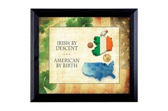 American Coin Treasures Irish By Descent Framed Memorabilia