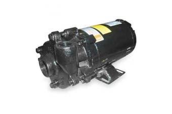 DAYTON Pump,1/3 HP,1 Ph,120/240VAC 2ZWN9