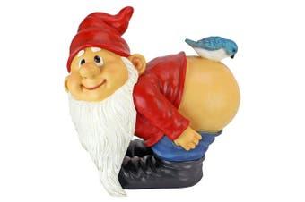 (Large) - Design Toscano Loonie Moonie Bare Buttocks Garden Gnome Statue: Large