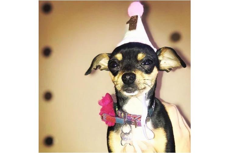 (Pink 1) - Petsidea Glitter Dog First Birthday Cone Hat Mini Doggy Cat Kitty Birthday Party Hats