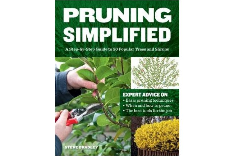 Pruning Simplified: A Step-By-Step Guide to 50 Popular