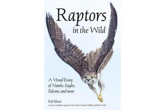 Raptors In The Wild: A Visual Essay of Hawks, Eagles, Falcons, and more.