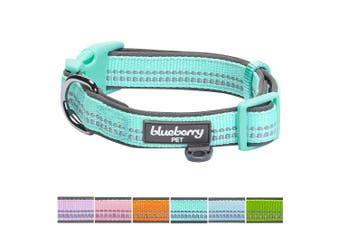 (Medium, Padded - Mint Blue with 3M Reflective Ribbon) - Blueberry Pet Soft & Comfy 3M Reflective Pastel Colour Padded Dog Collar, Matching Leash & Harness Available Separately