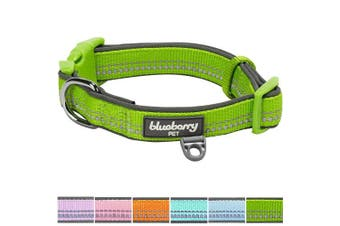 (Large, Padded - Green with 3M Reflective Ribbon) - Blueberry Pet Soft & Comfy 3M Reflective Pastel Colour Padded Dog Collar, Matching Leash & Harness Available Separately