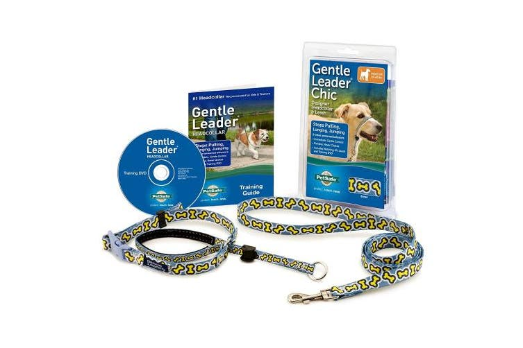 (Medium - 11-27kg, Bonez) - PetSafe Gentle Leader Chic Head Collar