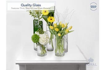 (13cm  wide x 30cm  tall, Clear) - Flower Glass Vase Decorative Centrepiece For Home or Wedding by Royal Imports - Cylinder Shape, 30cm Tall, 13cm Opening, Clear