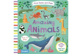 Amazing Animals (First Facts and Flaps) [Board book]
