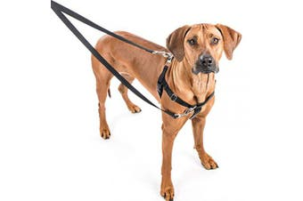(Black) - 2 Hounds Design Freedom No-Pull No Leash Harness Only, 2.5cm , 2X-Large