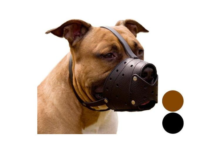 (Brown) - Pit Bull PitBull Terrier Secure Basket Dog Muzzle Genuine Leather Staffordshire Terrier