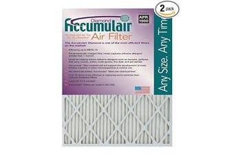 Accumulair FD10X20_2 2 Disposable Air Filter, 25cm x 50cm x 2.5cm , 2 Piece