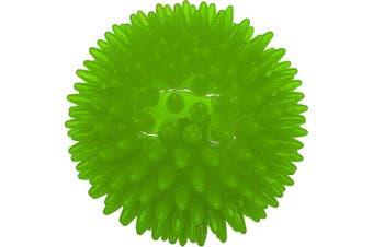 (Green) - ASPCA 8.9cm Dental Ball Dog Toy