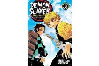 Demon Slayer: Kimetsu No Yaiba, Vol. 3 (Demon Slayer: Kimetsu No Yaiba)