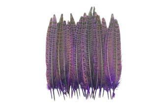(Purple) - Celine lin 20PCS Natural DIY Pheasant Feathers Pheasant Tails 7-10inch(18-25CM)£¬Purple