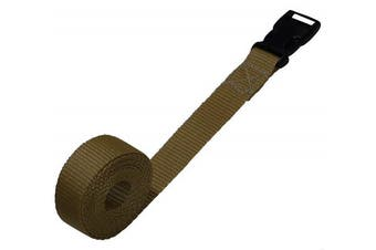 (beige, 1 metre) - Benristraps 25mm Webbing Strap with Quick-Release Buckle