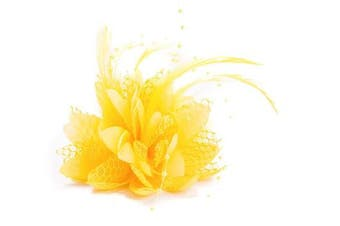 Ladies Beaded Feather Fascinator Clip, Hair Bobble and Brooch Pin (YELLOW)