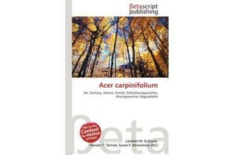 Acer Carpinifolium [German]