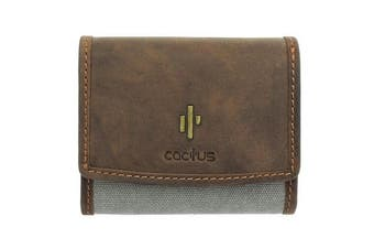 (Grey) - Mala Leather CACTUS Collection Canvas Purse With RFID Protection 3425_81 Grey