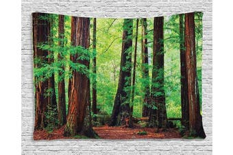 (200cm  W By 150cm  L, Multi 2) - Woodland Decor Tapestry, Redwood Trees Northwest Rain Forest Tropic Scenic Wild Nature Lush Branch, Wall Hanging for Bedroom Living Room Dorm, 80 W X 60 L Inches, Green and Brown
