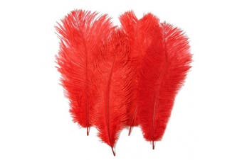 (20 Pcs Red) - 20pcs Real Natural Ostrich Feathers 12-14 inches (30-35cm) for Home Decoration DIY Craft (Red)