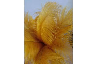 (20 Pcs Gold) - 20pcs Real Natural Ostrich Feathers 12-14 inches (30-35cm) for Home Decoration DIY Craft (Gold)