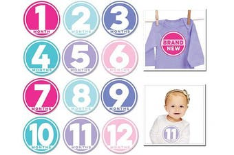 (Modern Miss) - Sticky Bellies Baby Month Stickers- Modern Miss