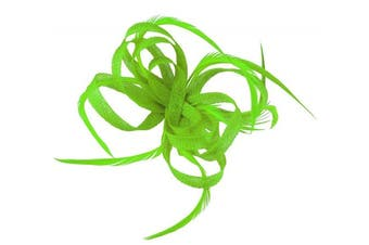 (Green) - Aurora Collection Loops in Hessian Fascinator