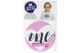 (Pink) - Bobee Milestone Sticker Baby Gifts for Girls