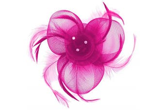 (Pink) - Aurora Collection Swirl and Biots with Diamantes Fascinator