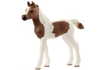 Schleich Horse Club Pintabian Foal Toy