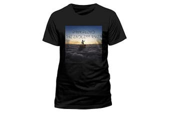 (Medium, Black) - CID Men's Pink Floyd-Endless River T-Shirt