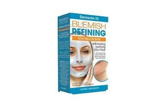 Dermactin-TS Blemish Control Cleansing Soap