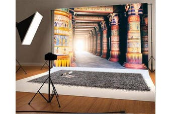 (2.1m x 1.5m, color17) - Laeacco 2.1m x 1.5m Vinyl Backdrop Photography Background Egyptian Stone Pillar Art Colour Wall Drawing Mural Ancient Egyptian Writing Photo Backdrop Majestic Scene TV or Video Shoot