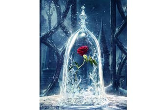 (No Frame, Enchanted Rose) - ABEUTY DIY Paint by Numbers for Adults Beginner - Roses in Glass Dome, Beauty and the Beast, Enchanted Rose 41cm x 50cm Number Painting Anti Stress Toys (No Frame)