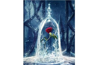 (Wooden Framed, Enchanted Rose) - ABEUTY DIY Paint by Numbers for Adults Beginner - Roses in Glass Dome, Beauty and the Beast, Enchanted Rose 41cm x 50cm Number Painting Anti Stress Toys (Wooden Framed)