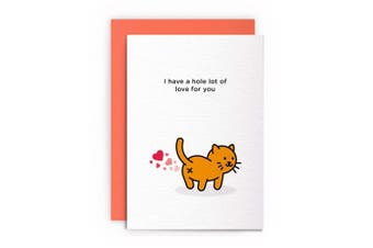 Cat Anniversary Funny Rude Humorous – I HAVE A HOLE LOT OF LOVE FOR YOU – Anniversary Card Greeting Card Friends Joke Naughty For Him For Her