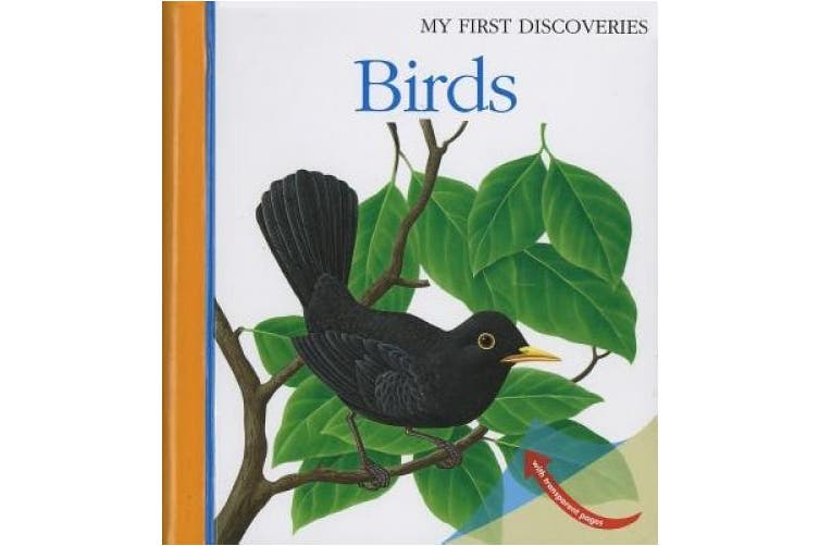 Birds (My First Discoveries)