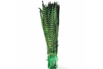 (Green) - Celine lin 10PCS Natural Pheasant Feathers Pheasant Tails 14-16inch(35-40CM),Green