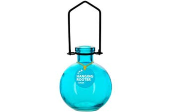 (18cm  Tall, Aqua) - Couronne Company M370-6544G09 Hanging Ball Recycled Glass Rooting Vase, 18cm , Aqua, 1 Piece