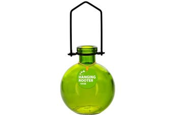 (18cm  Tall, Lime) - Couronne Company M370-6544G01 Hanging Ball Recycled Glass Rooting Vase, 18cm , Lime, 1 Piece