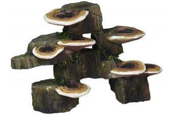 Pen Plax RR1006 Mushrooms on Rock Aquarium Ornament, Small/15cm x 7.6cm x 11cm