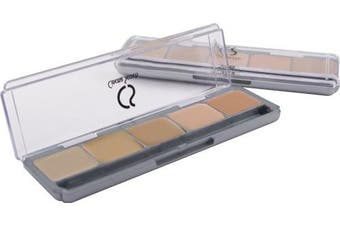 (#02) - Ultimate Corrector 5-in-1 PRO Palette, Kit #2 (MEDIUM TO DEEP CORRECTORS)