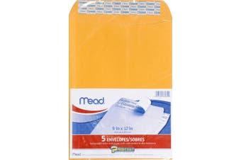 (1) - MEAD Press It-Seal-It Envelopes (MEA76080)
